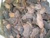 Borovicová kôra Frakcia 20 - 40mm